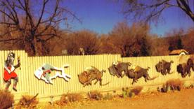 8. Sedona, AZ - Running Buffalo